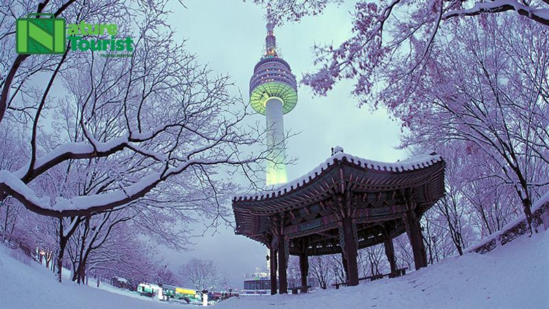 Tuyết rơi trắng xóa vào mùa đông