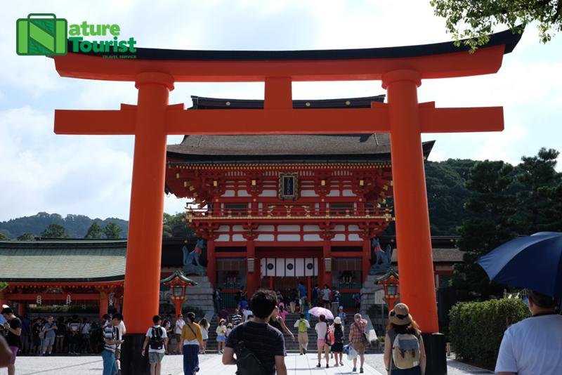 cong-torii-mau-do-son-dac-trung-tai-den-fushimi-inari-taisha