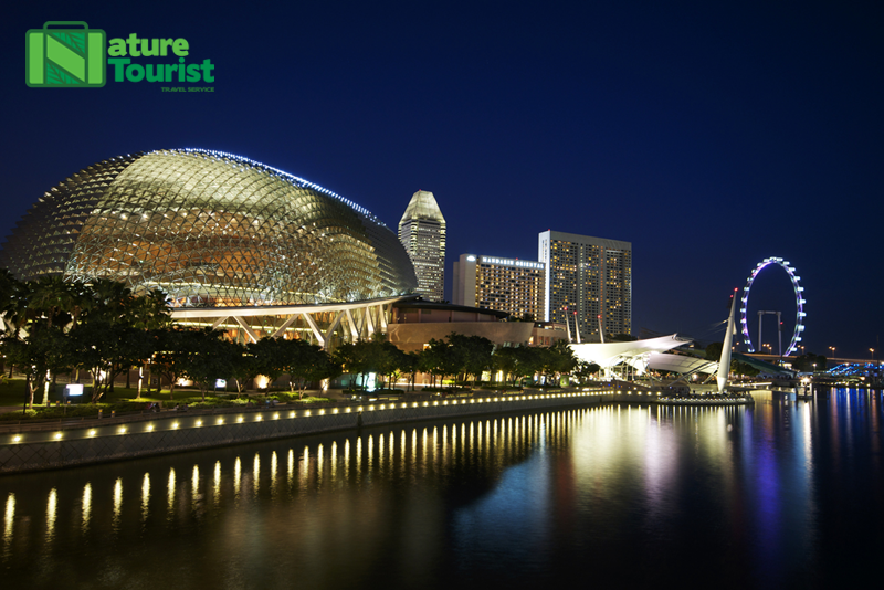 toan-canh-nha-hat-sau-rieng-singapore-ve-dem