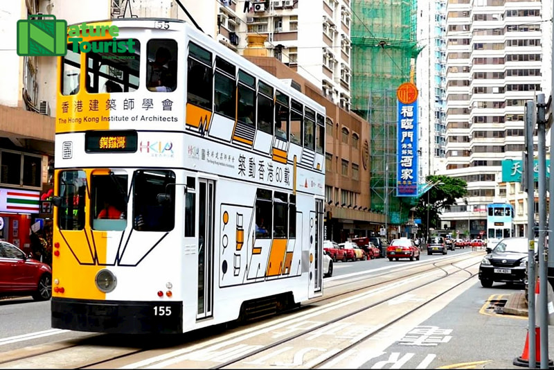 tuong-tu-nhu-xe-buyt-2-tang-nhung-tram-chay-tren-duong-ray-va-tuyen-duong-di-chuyen-cung-han-che-hon
